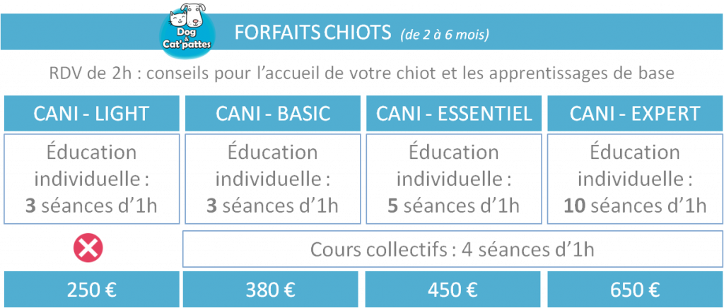 éducation_canine_chiot_cours_individuels_collectifs