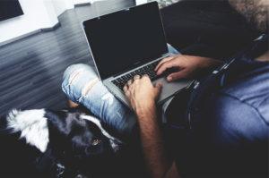 chien et télétravail